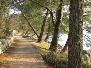 Paradiesweg